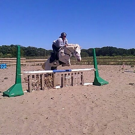 Saint-Laurent-d'Aigouze, Frankreich: Annie Poney Club