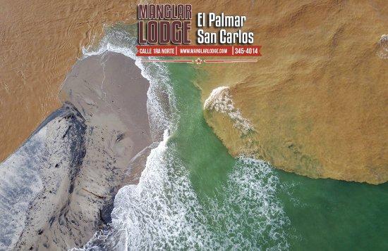 Manglar Lodge El Palmar San Carlos , Panama (507) 345-4014 For reservations visit our website ww