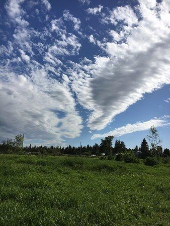 Langley City, Canada: photo0.jpg