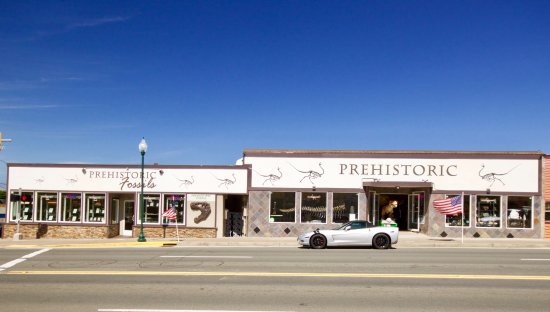 Lincoln City, OR: Prehistoric and Prehistoric fossils storefront