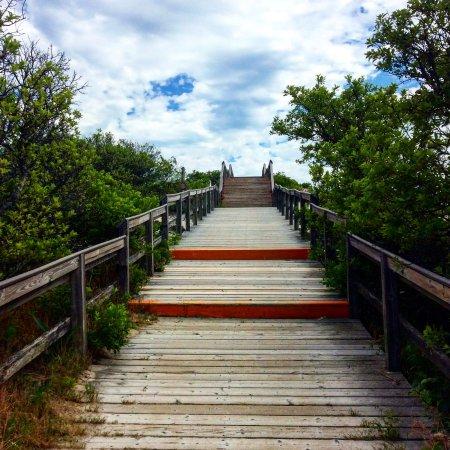 Crane Beach: Boardwalk to the beach