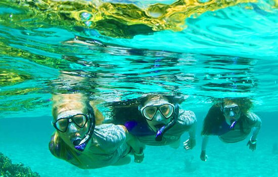 West Bay Tours - Private Tours: Snorkeling Tour Adventure in West Bay Beach, Roatan, Honduras.