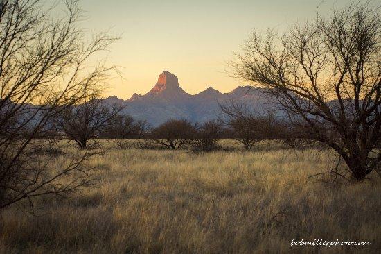 Sasabe, AZ: Baboquivari Peak