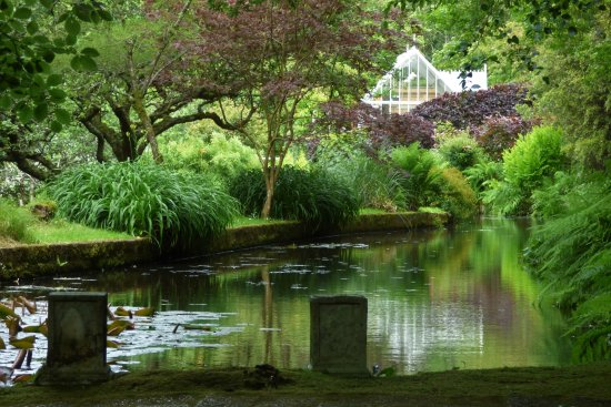 Hartland, UK: Docton Mill Gardens and Tea Rooms