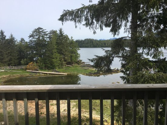 Water's Edge Shoreside Suites: View from cabin #501 - May 2017