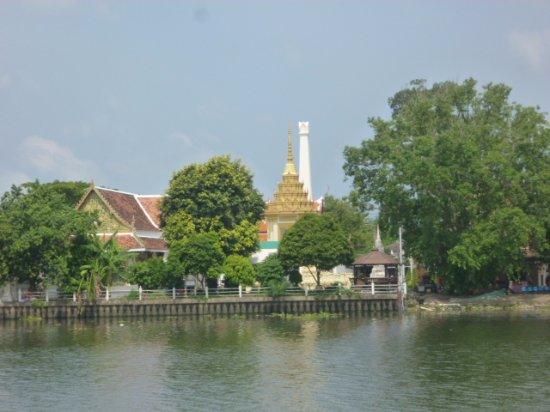 Chao Praya River : アユタヤ近くの川岸。緑が多くなります。