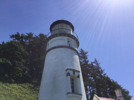 Heceta Head Lighthouse: photo5.jpg