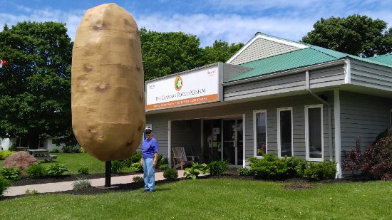 O'Leary, Canadá: Giant potato