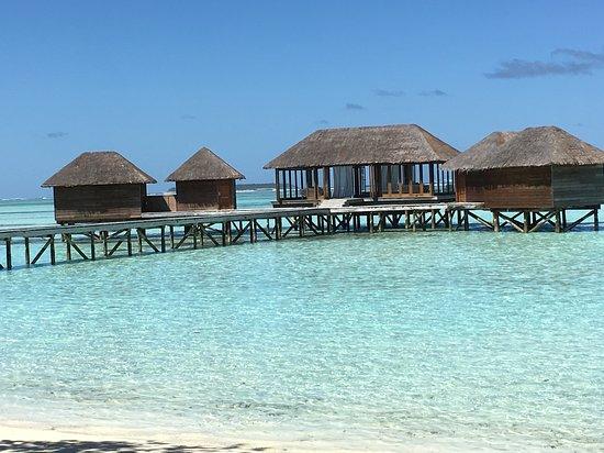 Picture of conrad maldives rangali island for Conrad maldives rangali