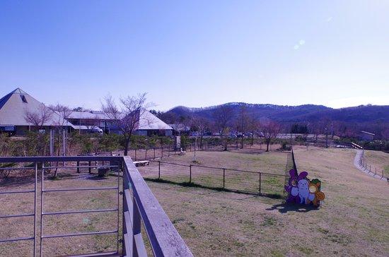Tenei-mura, Japonia: レストランの展望デッキからドッグランを望む