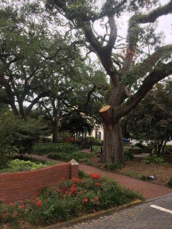 Savannah Historic District : photo2.jpg