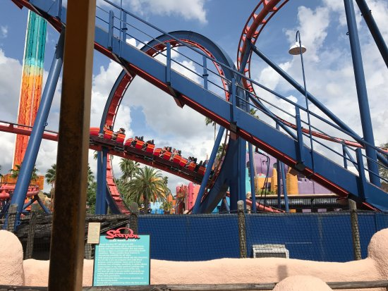Picture Of Busch Gardens Tampa Tampa