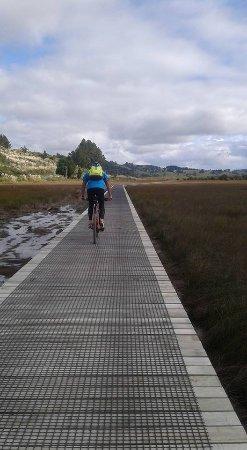 Paihia, Nuova Zelanda: Heading into Horeke