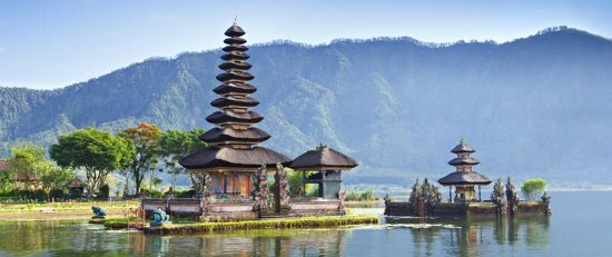 Bali Driver Buda - Private Tours