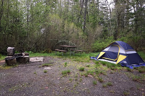 Seawall Campground: B-Loop, Campsite #25