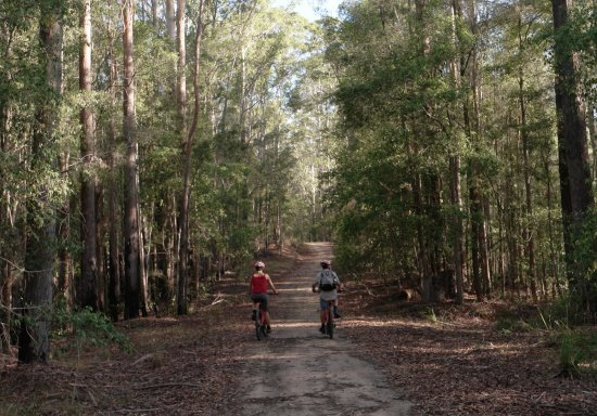 Bellingen Nature Bike Rides