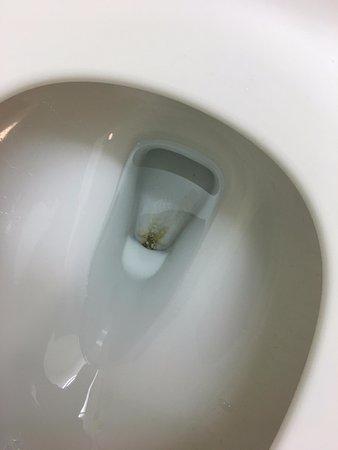 Fairfield Inn & Suites Hartford Airport: Toilet in bathroom, not even cleaned.....