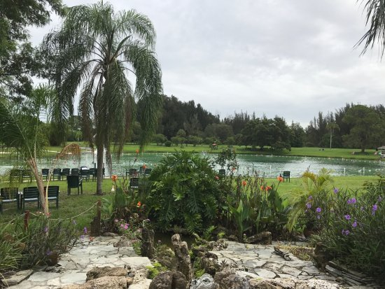 Warm Mineral Springs: View from the entrance as an overview of the whole area