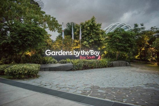 free singapore tour gardens by the bay entrance - Garden By The Bay Entrance