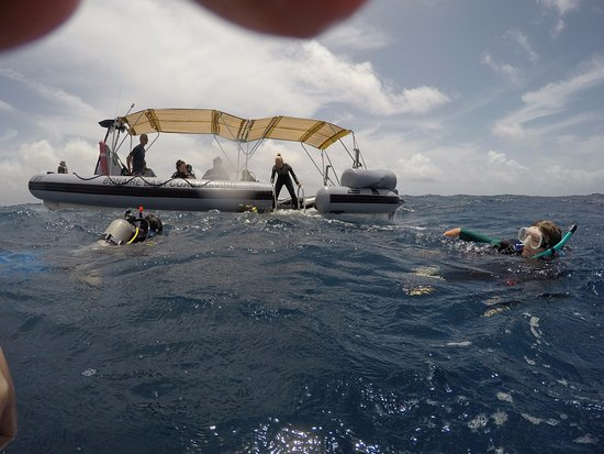 Kralendijk, Bonaire: Having fun in the waves, waiting to board the Zodiac!
