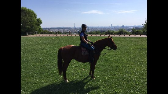 Gif-sur-Yvette, ฝรั่งเศส: Myself with a view of Paris in Parc de St. Cloud.