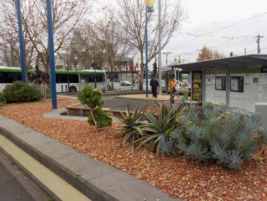 Moonee Ponds, Avustralya: Bus and Tram Interchange near start of Puckle Street