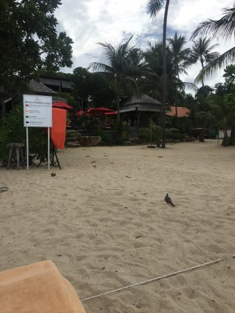 New Star Beach Resort: photo0.jpg