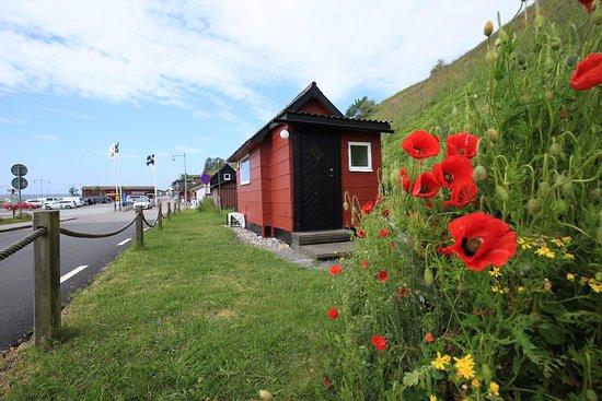 Loderup, Svezia: Kåseberga Hafen Juni 2017