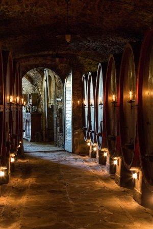 Radda in Chianti, Ιταλία: la sala delle botti secolari _  secular barrels room