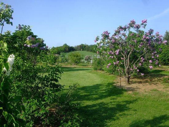 Kawashimo Park