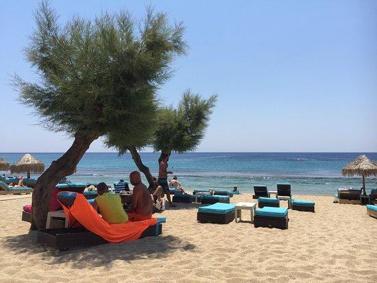 Paradise Beach: photo6.jpg