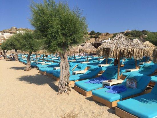 Paradise Beach: photo9.jpg