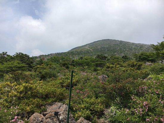 Hallasan National Park : photo6.jpg