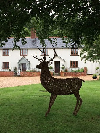 Waterrow, UK: Willow Stag in front of the farmhouse