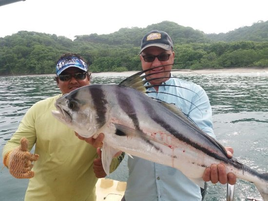 Playa Flamingo, Costa Rica: Rooster Fish !!!