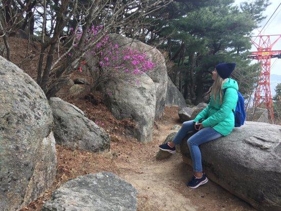 in the mountains 釜山 プサン 金剛公園の写真 トリップアドバイザー