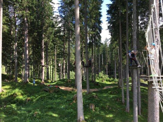 Rauris, Austria: climbing garden