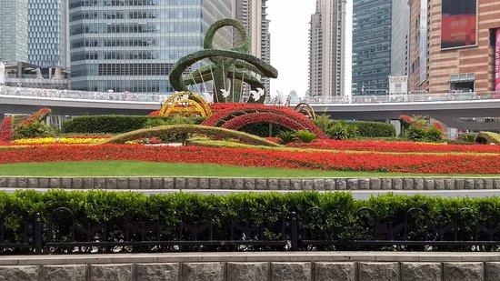 Shanghai Region Picture