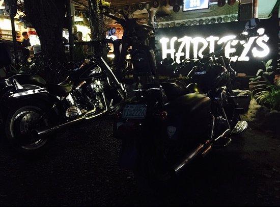 Harleys Hotel & Restaurant: photo3.jpg