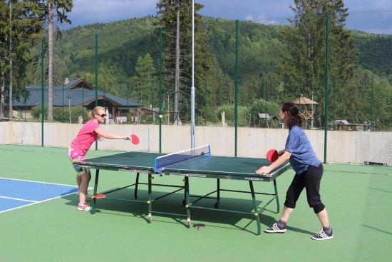 Брезно, Словакия: Stolný tenis
