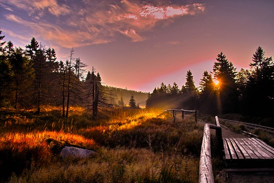 Nationaal park Harz