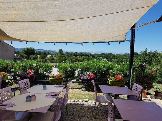Alzonne, Francia: Premières cueillette de l'été. Claude ramasse ces légumes avant de passer en cuisine