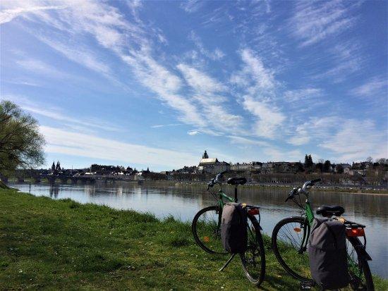 La Salamandre - Location velos Blois