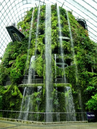 Worlds tallest indoor waterfall! - Picture of Gardens by the Bay ...