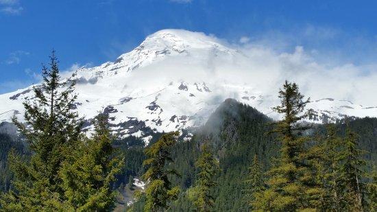 Ashford, Etat de Washington : Mount Rainier