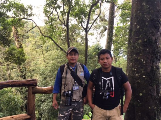 Santiago Atitlan, Gwatemala: Rolando and colleague are excellent birding guides. Can use eBird app