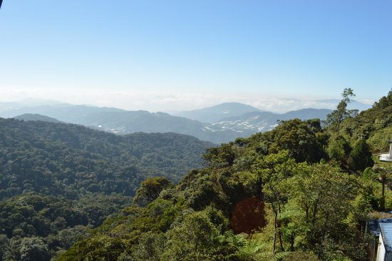 Tanah Rata, Malaysia: the hills are breath taking