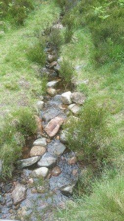 Aviemore, UK: Einer der Zuläufe Loch Eilein