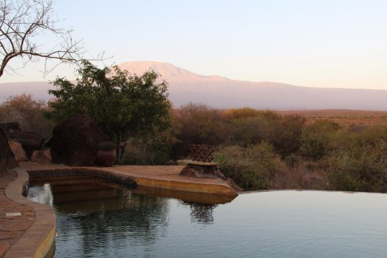 Satao Elerai: View of Mt. Kilimanjaro from poolside.