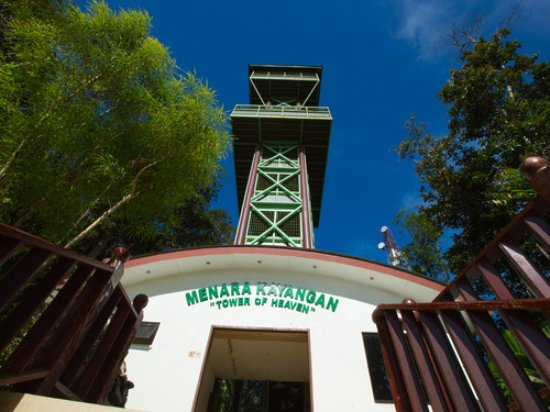 Lahad Datu, Malaysia: Tower of Heaven in a Top 10 Jungle!